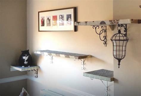 Katzen Wand Selber Bauen 1377 by 30 Ideen F 252 R Eine Katzen Kletterwand Und Coole