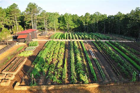 Garden Acres by P Allen Smith Hosts Garden2blog Event Gardens