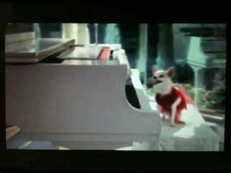 chloe movie piano song chloe play piano beverly hills chihuahua 3 doovi