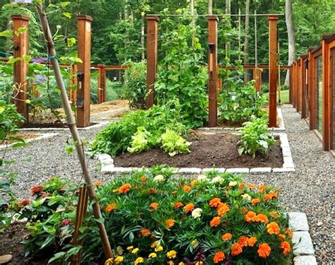 Vegetable Garden Planner Australia Vegetable Garden Planner Australia Best Idea Garden
