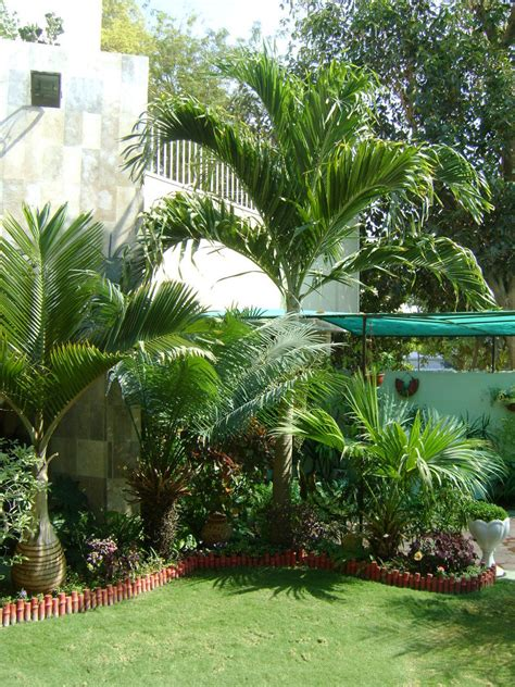 "Landscaping photo of ""Tropical garden"" posted by zeeshanuddin"