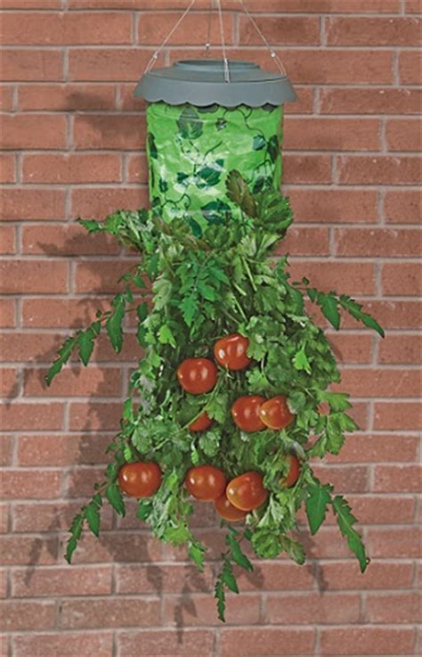 upside down hanging tomato garden planter ebay