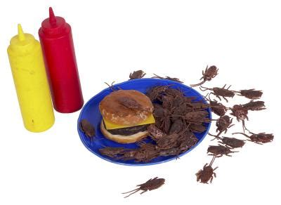 keep roaches out of cabinets how to get cockroaches out of kitchen cabinets home