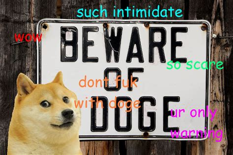 Doge Meme Best - wow 30 best doge memes gifs and comics weknowmemes