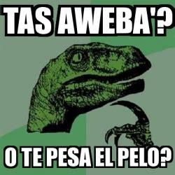 Tasmania Memes - meme filosoraptor tas aweba o te pesa el pelo 17759809