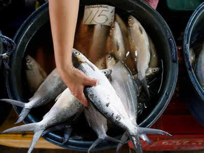 fishing boat price in chennai fish prices double as fishermen stay off sea for a week