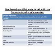 Intoxicaciones Por Organofosforados Y Carbamatos