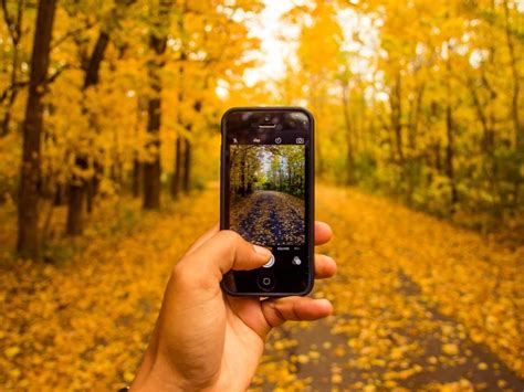 phone photography tips and apps for better mobile phone photography ndtv