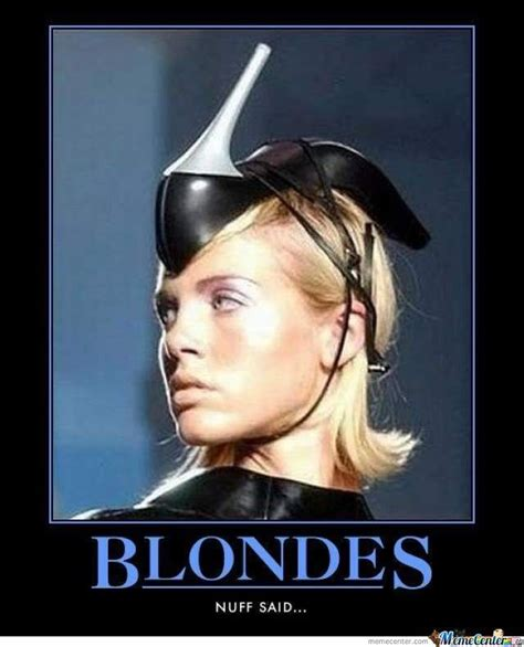 25 best ideas about blonde memes on pinterest funny cat