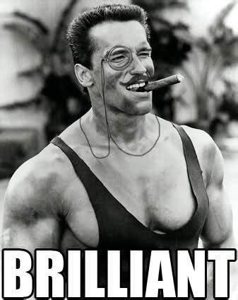 Brilliant Meme - arnold schwarzenegger meh ro