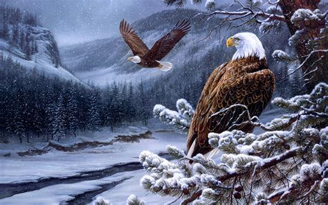 cool eagle wallpaper eagle computer wallpapers desktop backgrounds 2560x1600