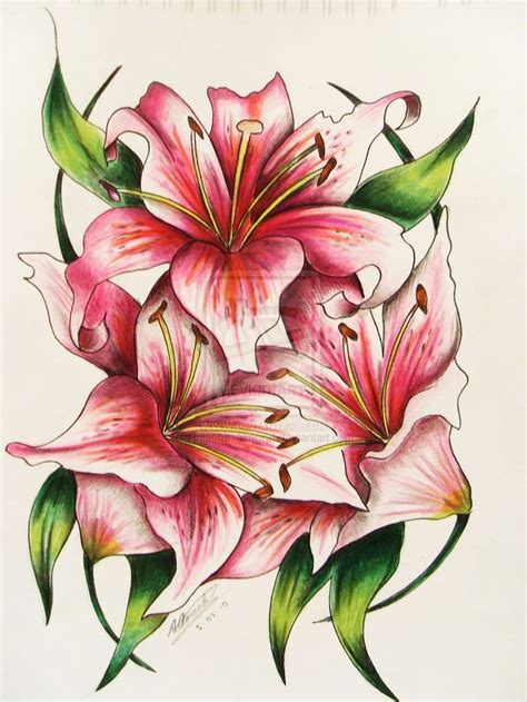 stargazer lily tattoo designs 39 best images about inspiration on