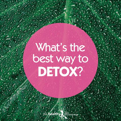 What Happens After Detox by Detox 101 What Happens To Your When You Detox