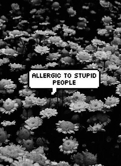 stupid people  tumblr