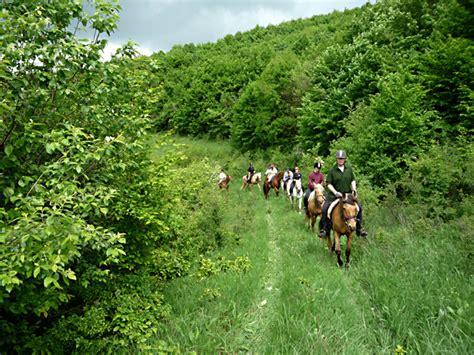 continente salvaje europa el 225 rea natural m 225 s salvaje de europa a caballo