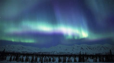 denali national park northern lights pin northern lights alaska wallpaper on pinterest