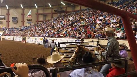 San Angelo Records Shane Hanchey 6 8 San Angelo Stock Show And Rodeo Arena