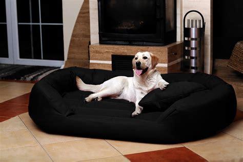 xxxl dog bed worldwise dog beds overstuffed xxxl jumbo dog bed elevated