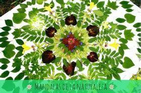 hojas secas de masa de sal manualidades infantiles manualidades de hojas manualidades infantiles