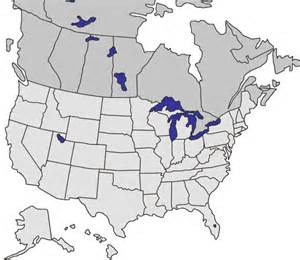 contact us brock 174 systems for grain storage handling