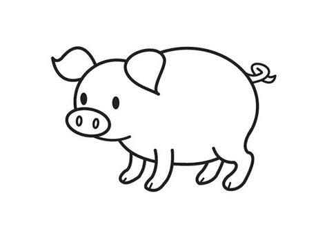 free coloring pages cute cute pig