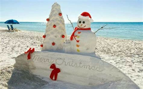merry tropical christmas images  pinterest coastal christmas tropical christmas