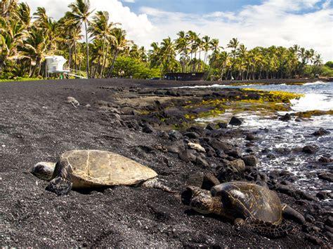 punaluu black sand beach explore the volcano night tour hawaii volcano expeditions