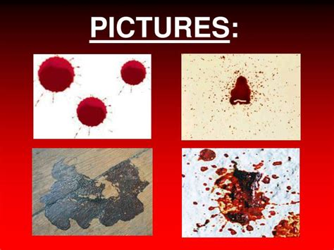 wipe pattern definition ppt blood spatter analysis powerpoint presentation id