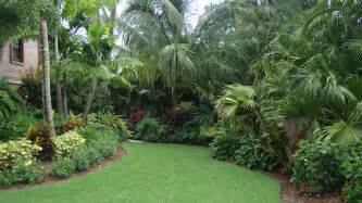 Mosquito Solutions Backyard Best Pest Control Company In Miami Top Lawn Care Powerx