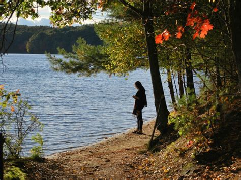 walden book on discovering the beaches of walden pond