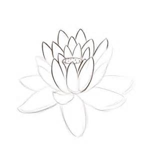 Lotus Flower Drawing How To Draw A Lotus Flower