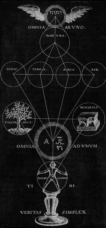 chaosophia218: Theophilius Schweighart - Tree of