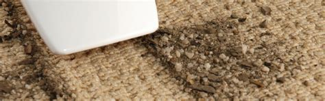 how to clean sisal rug how to clean a sisal rug roselawnlutheran