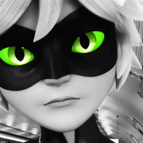 chat noir wallpaper miraculous ladybug miraculous ladybug images chat noir wallpaper and