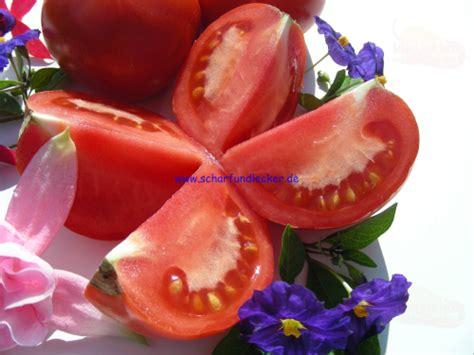 Pflanze Bestellen 655 by Ponte Gada Tomaten Samen Jetzt Bestellen