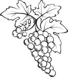 Free Printable Bunch Of Grapes Coloring Page sketch template