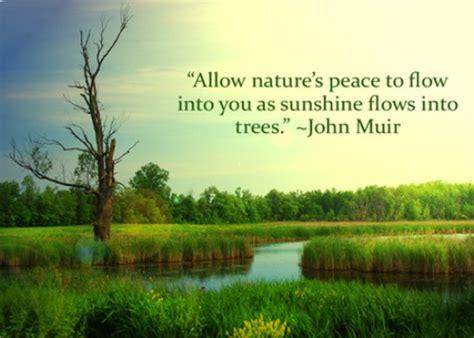Nature Quotes Tree Nature Quotes Quotesgram