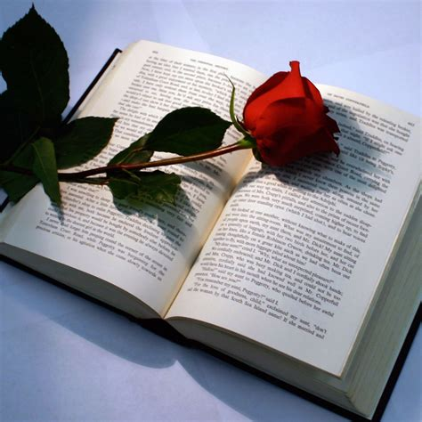 roses books with book by skait on deviantart