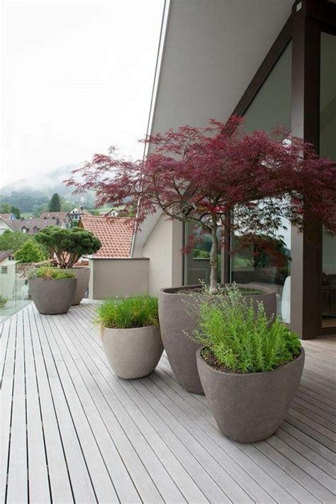 Japanischer Garten Pflanzen 352 by Terrasse Arbre De Cr 233 Ation Inspirant Plantes Garten