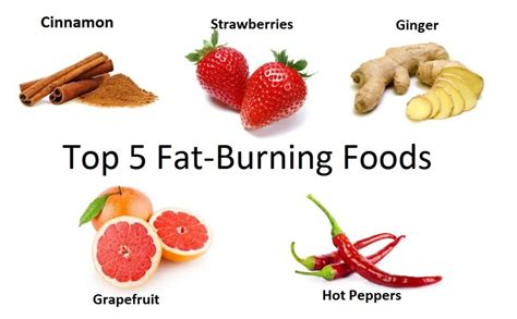 5 healthy fats top 5 burning foods