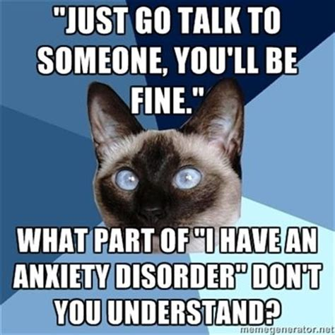 Anxiety Meme - the 25 best introvert cat ideas on pinterest anxiety