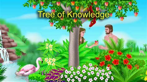 tree  knowledge   tree  life youtube