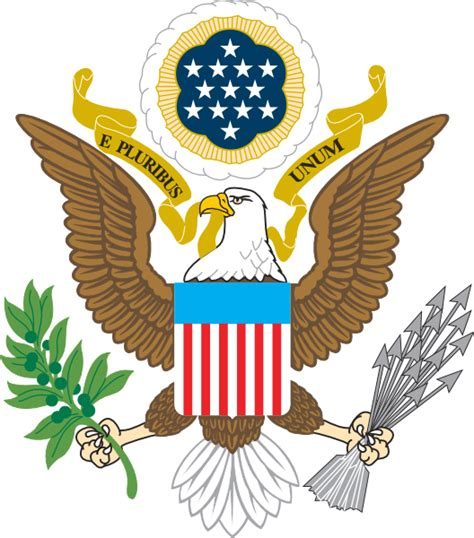 The Bald Eagle American Symbols of the jungle why eagle is symbol of america