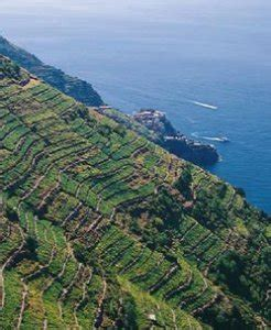 terrazzamenti liguri www rositour it proposte italia cinque terre viaggi