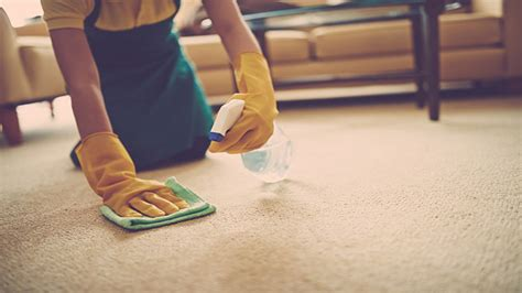 mcghee carpet and upholstery cleaning starting a carpet and floor cleaning business gurus floor