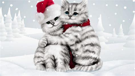 wallpaper cute hug download winter cat hug cute wallpaper for desktop mobile