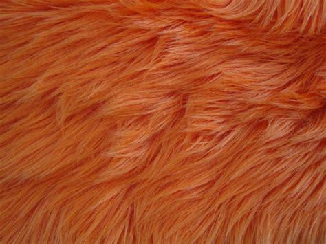 puppy fur fur texture textures fur texture and dogs
