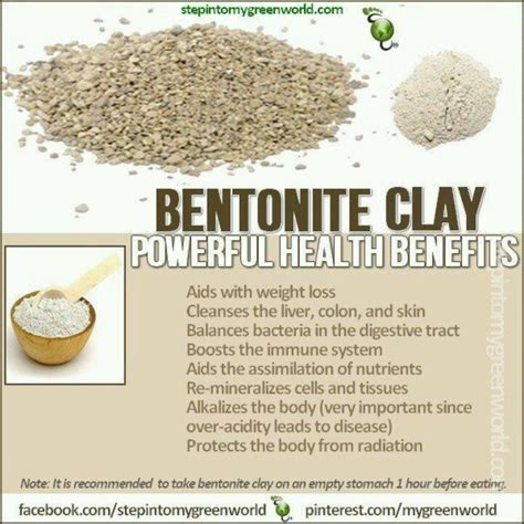 How To Detox With Bentonite Clay And Psyllium Husk by 1000 Images About 2 Bentonite Clay On Powder