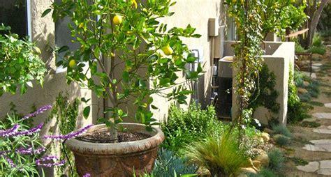 piccoli giardini fioriti giardini piccoli progettazione giardini come