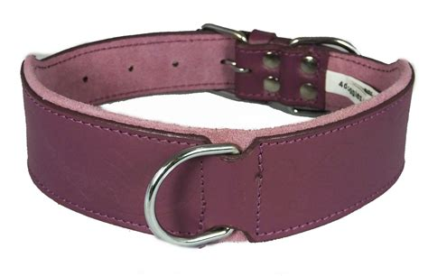 cheap collars wholesale purple paisley design leather staffy staffordshire bull terrier collar